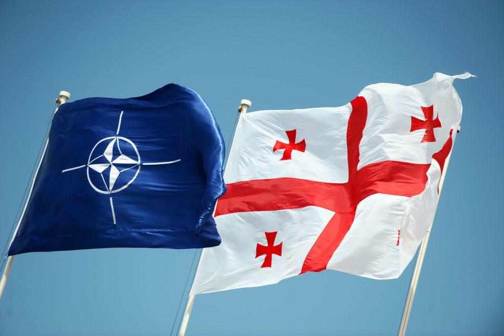 Министр обороны Грузии пожаловалась на некорректные высказывания представителя РФ в ОБСЕ